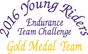 2016-yr-endurance-team-challenge-logo- 2016 YOUNG RIDERS ENDURANCE TEAM CHALLENGE GOLD MEDAL TEAM AWARD SPONSORS - DISTANCE DEPOT  &nbsp;  <strong>Thank you to our newest Gold Level Sponsor &#8211; </strong> <strong> The Distance Depot &#8211; You need it? They got it!  866-863-2349 <a href=